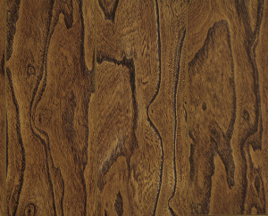 Continental - 8mm Laminate - Elm Wood - 26.16 sq.ft/ box