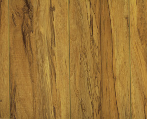 Imperial - 12mm Laminate - Australian Cypress - 19.77 sq. ft./ box
